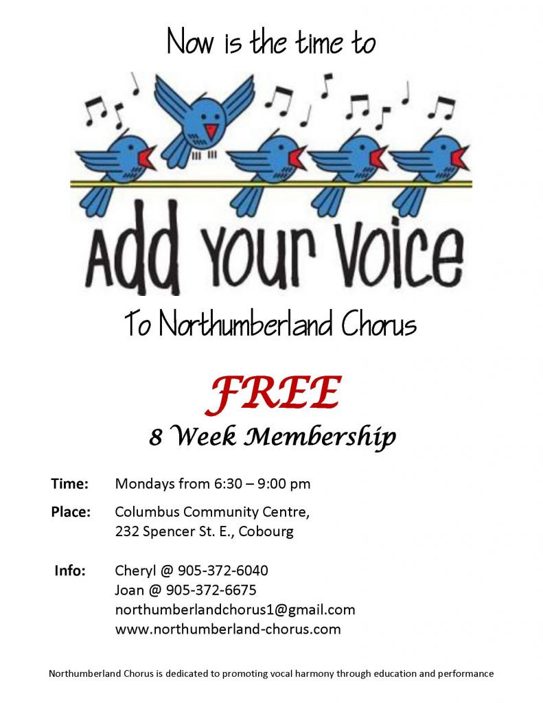 Add_Your_Voice_Poster